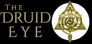 #druideye6aSH